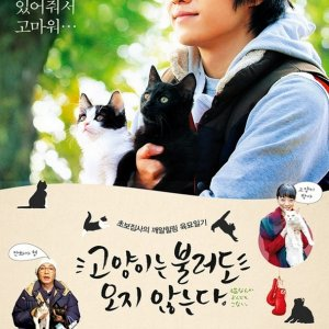 Cats Don't Come When You Call (2016) photo
