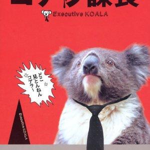 Executive Koala (2005) photo
