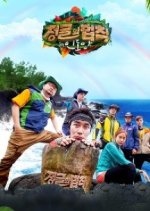 Law of the Jungle in Indian Ocean (2014) photo
