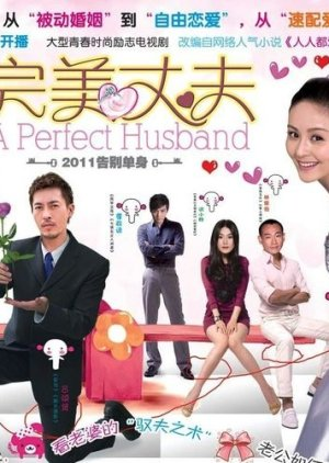 A Perfect Husband (2011) poster