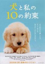 10 Promises To My Dog