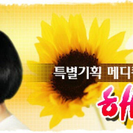 Sunflower (1998) photo