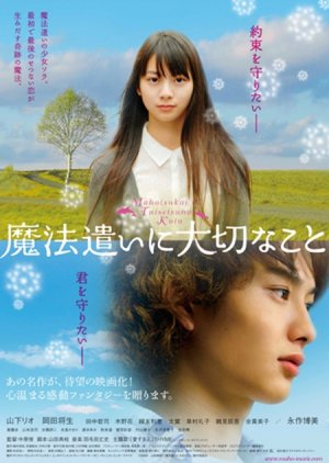 Someday's Dreamers (2008) poster