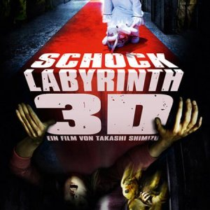 The Shock Labyrinth (2009) photo