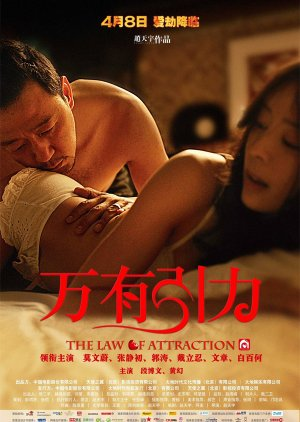 The Law of Attraction  (2011) poster