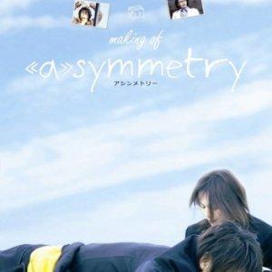 Asymmetry (2008) photo