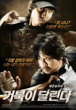 Running Turtle (2009) poster