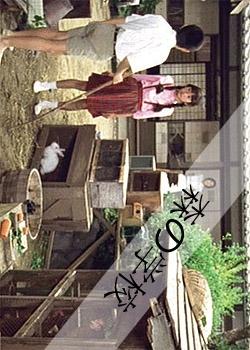 Mori no Gakko (2002) poster