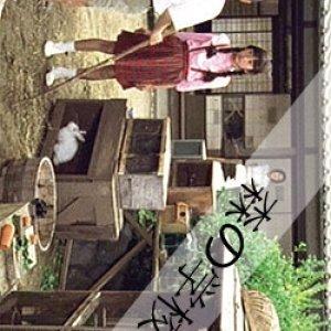 Mori no Gakko (2002) photo
