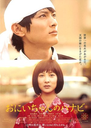 Fireworks from the Heart (2010) poster