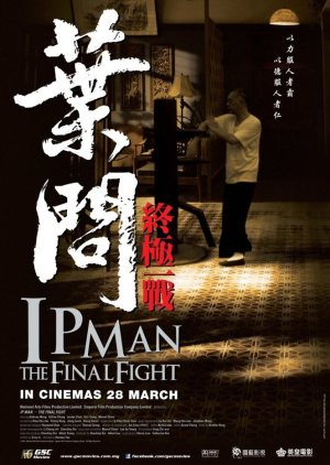 Ip Man: The Final Fight (2013) poster