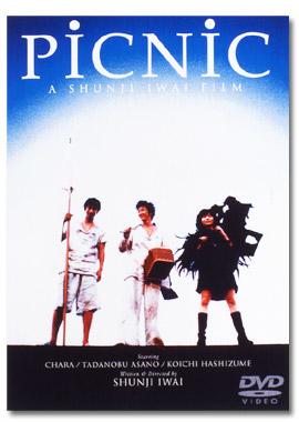 Picnic (1996) poster