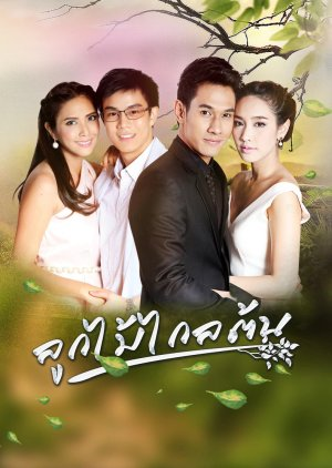 Look Mai Klai Ton (2016) poster