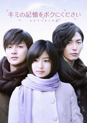 Kimi no Kioku wo Boku ni Kudasai (2010) poster