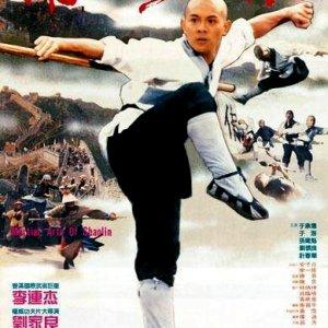 Shaolin Temple 3: Martial Arts of Shaolin (1986) photo