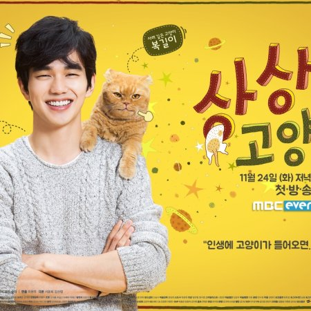 Imaginary Cat (2015)