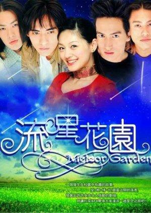 Meteor Garden (2001) poster