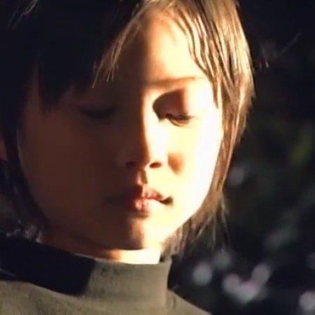 Kamen Rider Agito (2001) photo