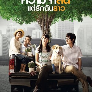 Best of Times (2009) photo