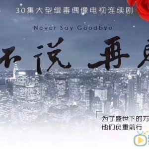 Never Say Goodbye (2020) photo