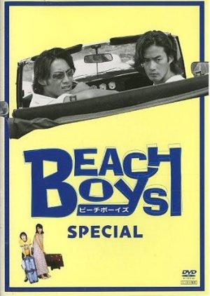 Beach Boys Special