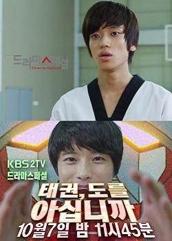 Drama Special Season 3: Do You Know Taekwondo? (2012) poster