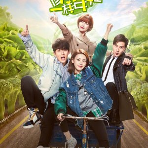 Meet in Youth Love in Foods (2018) photo