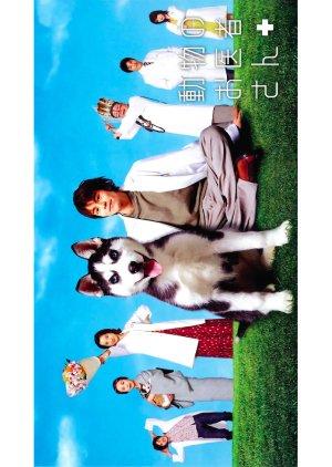 Dobutsu no Oisha-san (2003) poster