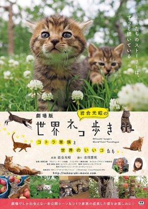 "Mitsuaki Iwago's World ""Cats"" Travelogue"