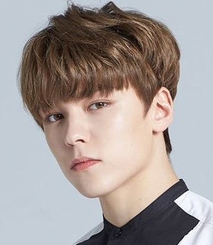 Vernon in Seventeen Project: Big Debut Plan Korean TV Show (2015)
