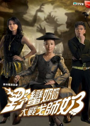Wars of In-Laws II (2008) poster