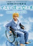 I Will Fly to the Sky on a Wheelchair!