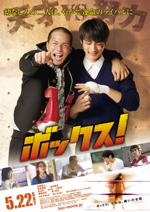 Box! (2010) poster
