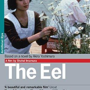 The Eel (1997) photo