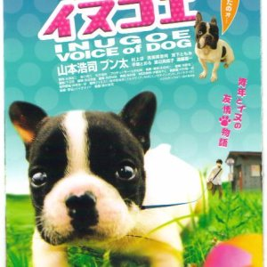 Voice of Dog (2006) photo