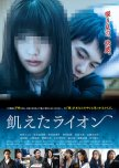 The Hungry Lion japanese drama review