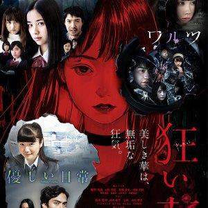Kuruibana (2017)