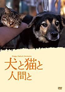 Inu to Neko to Ningen to (2009) poster