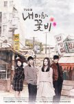 TV Novel: My Mind's Flower Rain