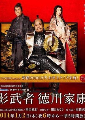 Kagemusha Tokugawa Ieyasu  (2014) poster