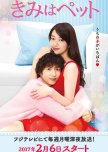Lighthearted, cheesy, fluffy, but cute dramas!