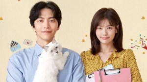 Amyy's Top 3 Dramas of 2017!
