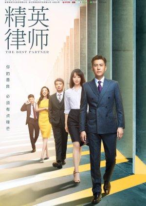 The Best Partner (2019) poster