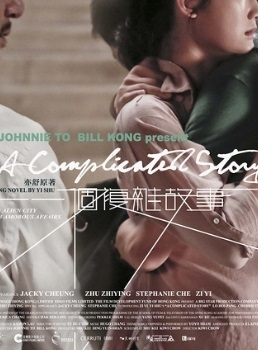 A Complicated Story (2013) poster