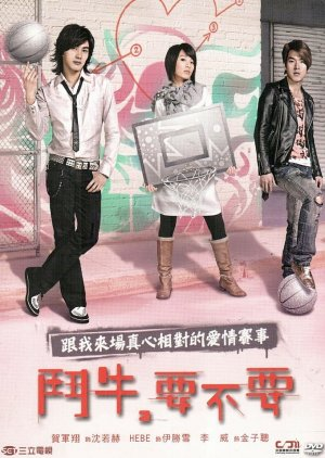 Bull Fighting (2007) poster