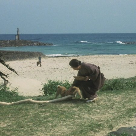 Hachiko Monogatari (1987) photo