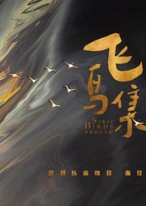 Stray Birds (2019) poster