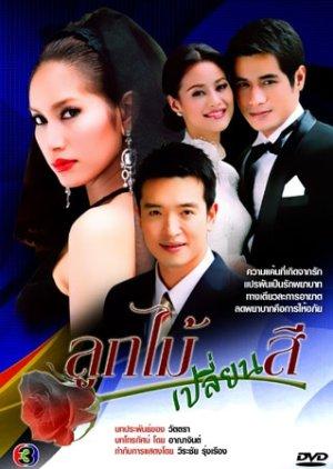 Luk Maai Blien See (2009) poster