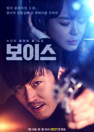 Voice Special (2017) poster