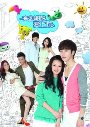 Term of Validity for Love (2014) - MyDramaList